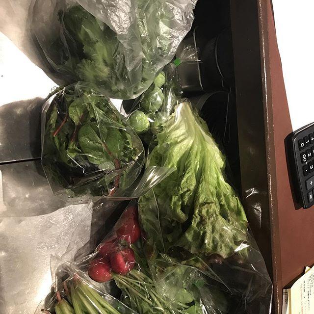 今日の野菜達#アクサングラーブルソレイユ #北新地#フレンチ