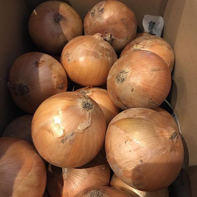 玉ねぎ!ソレイユの定番玉ねぎのキッシュ用毎年この時期の吊るし玉ねぎを使用しています。今日のノルマは20kg今月中に70kgー100kgできないとお盆休み中に玉ねぎトントン#玉ねぎ#キッシュ#キッシュロレーヌ #玉ねぎのキッシュ#10kgが3kgまで炒める#