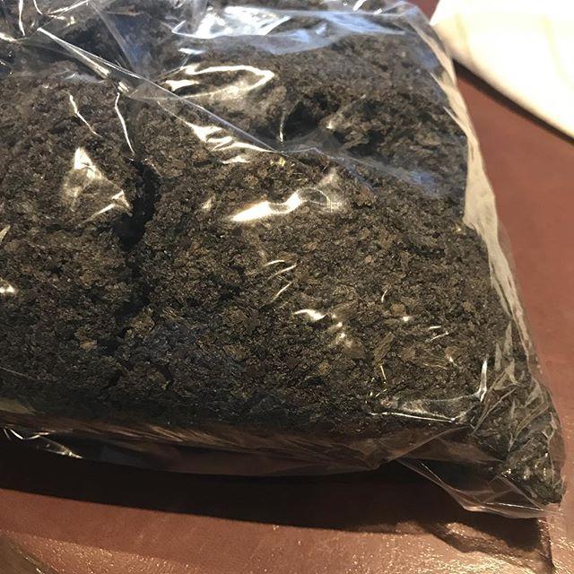 何かわかりますか?琢屋さんのイカスミパン粉です!来月からのコースで使います(^^)#アクサングラーブルソレイユ #琢屋